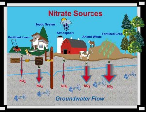 Treatment For Nitrates In Well Water Yakima Water Solutions