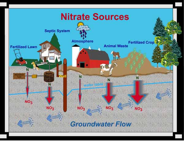 Free Nitrate Testing And Treatment Solutions For Nitrates